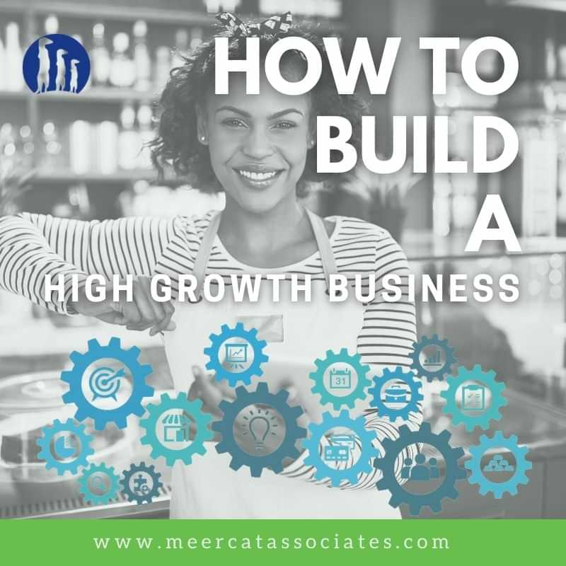 How to build a high growth business