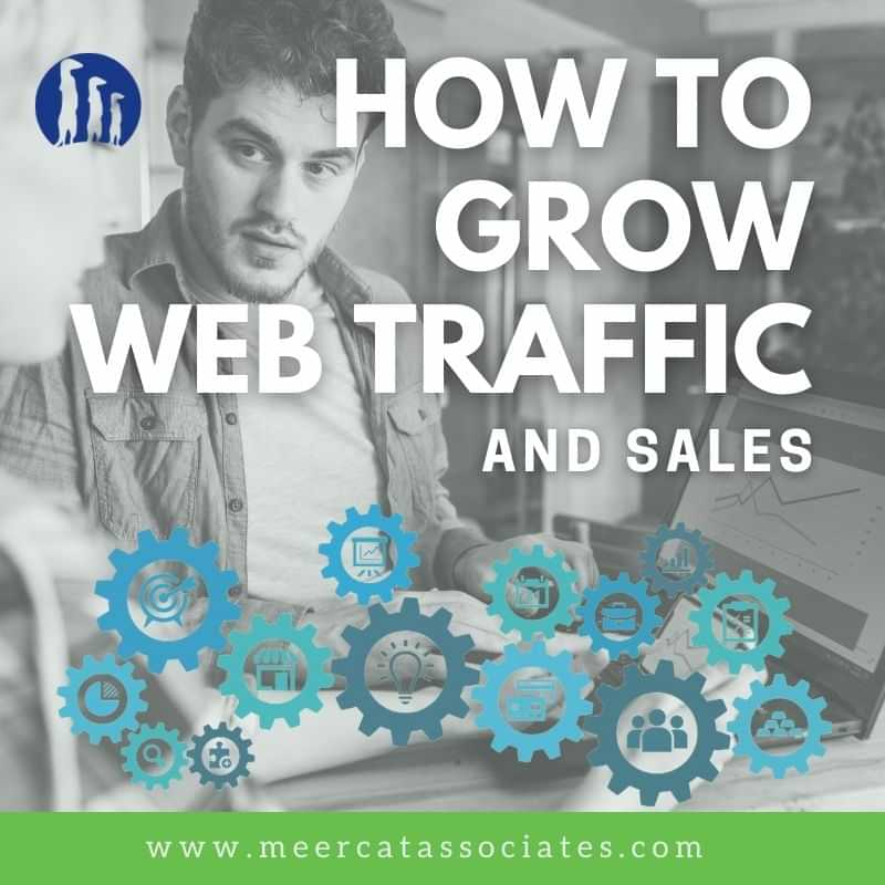 How to grow web traffic and sales