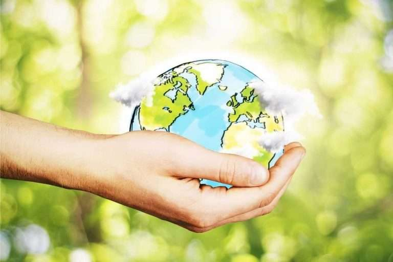 What Does Net Zero Mean For Businesses?